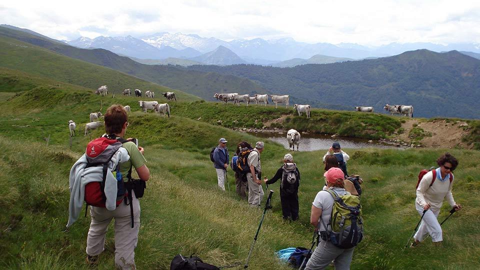 Randonnée Sportive - Sommets Prestigieux - Pic d'Estibat - Bureau des Guides Pyrénées Ariège - 3