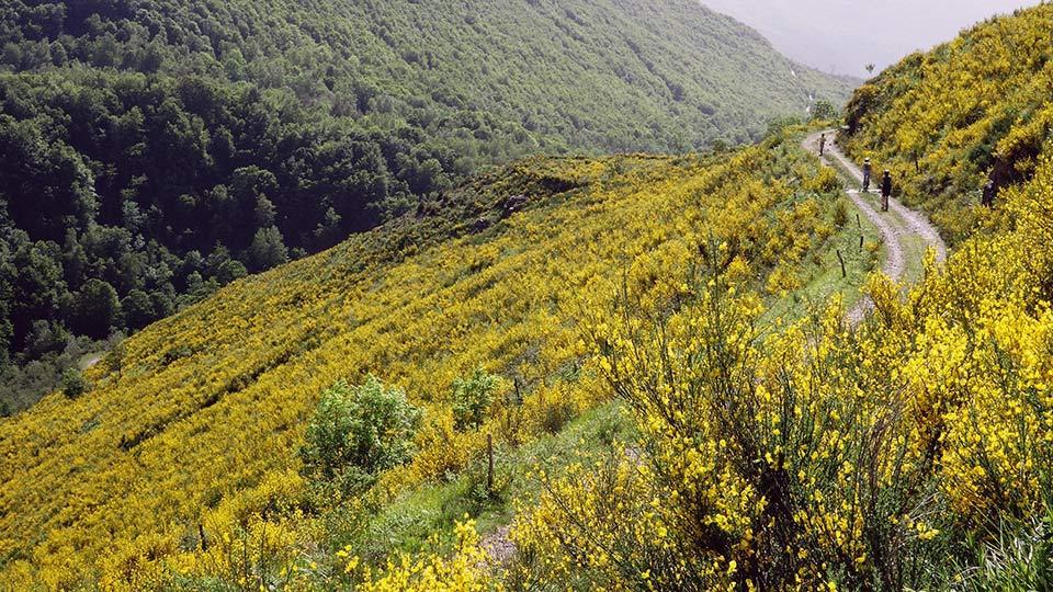 Arapaho-Famille-Descente-Luzenac-Bureau-Guides-Ariege-Pyrenees3