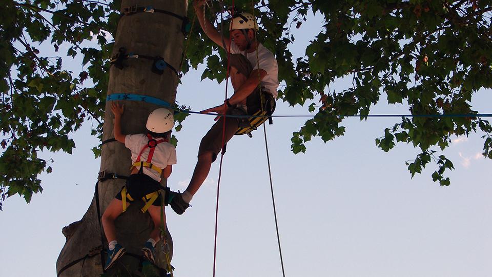 Grimpe dans les arbres - photo en action - Ronan LEPAGE Bureau des Guides Ariège Pyrénées